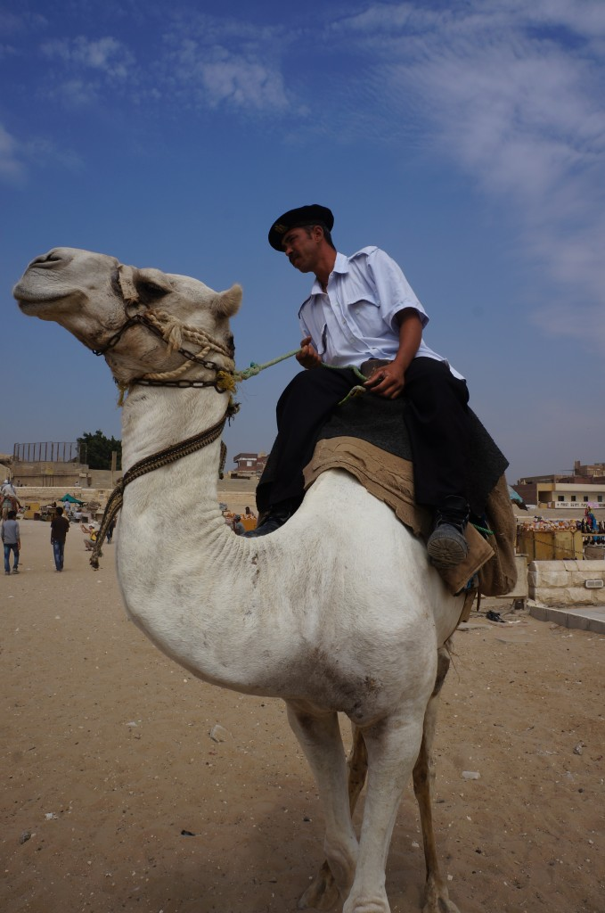 Grumpy Po Po at Giza